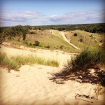 Dunes at Saugatuck